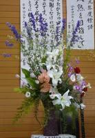 2009.5.17.jpg
